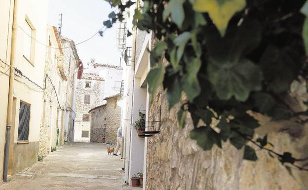 Un Pueblo De Valencia Quiere Desengancharse De La Red Electrica El