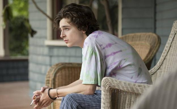 Timothée Chalamet, un adicto en 'Beautiful Boy'.