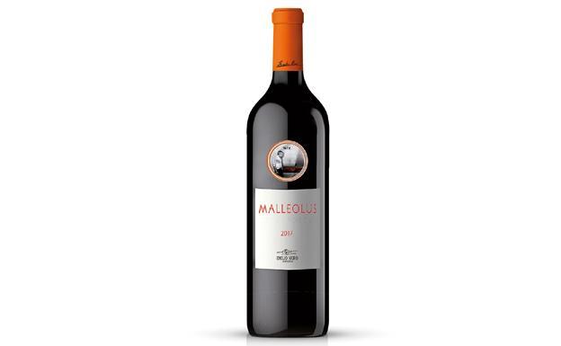 malleolus 2017 k4Y U120961516057RF